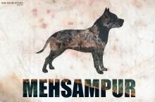 Mehsmapur