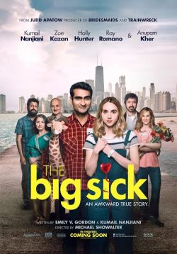 Image result for THE BIG SICK ( 2017 ) poster
